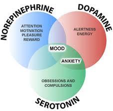 3 Hormones