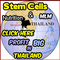 Thailand Stem cells